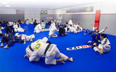 Martial Arts Mats by EZ Flex - EZ Flex Sport Mats